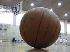 Pallone-basket.jpg