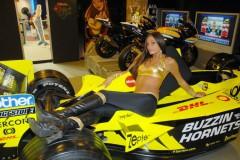 modelle-del-motor-show-2008_1.jpg